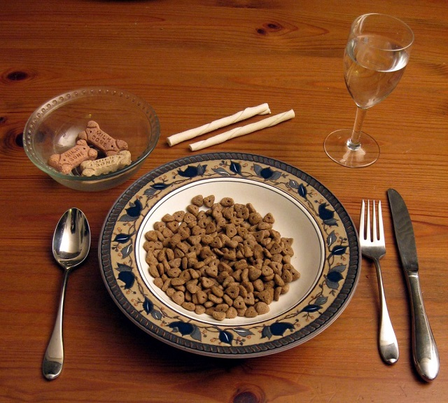 Why you need to keep seed oils out of your dog's food.