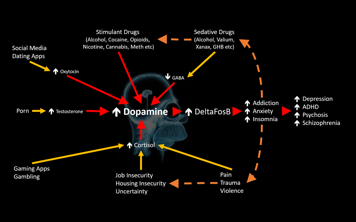 7 Paths to Mental Illness